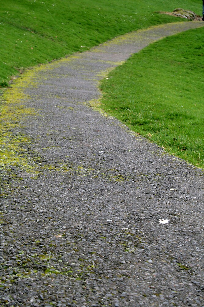 The Path by bethstedman