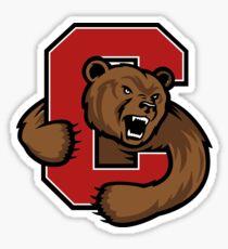 Cornell!  Sticker