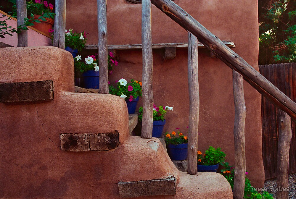 Southwestern Stairs With Flowers by Reese Forbes