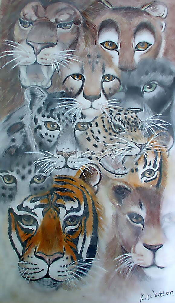 cats of the wild by marak
