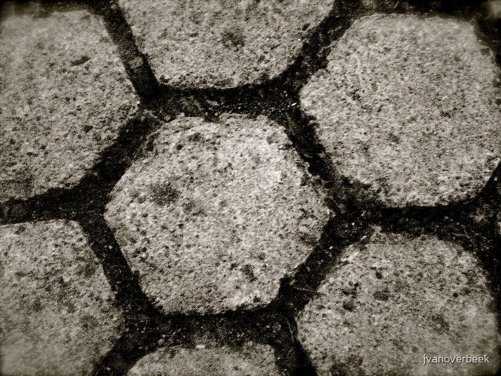 stone flower by jvanoverbeek