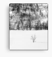 Norway monochrome Canvas Print