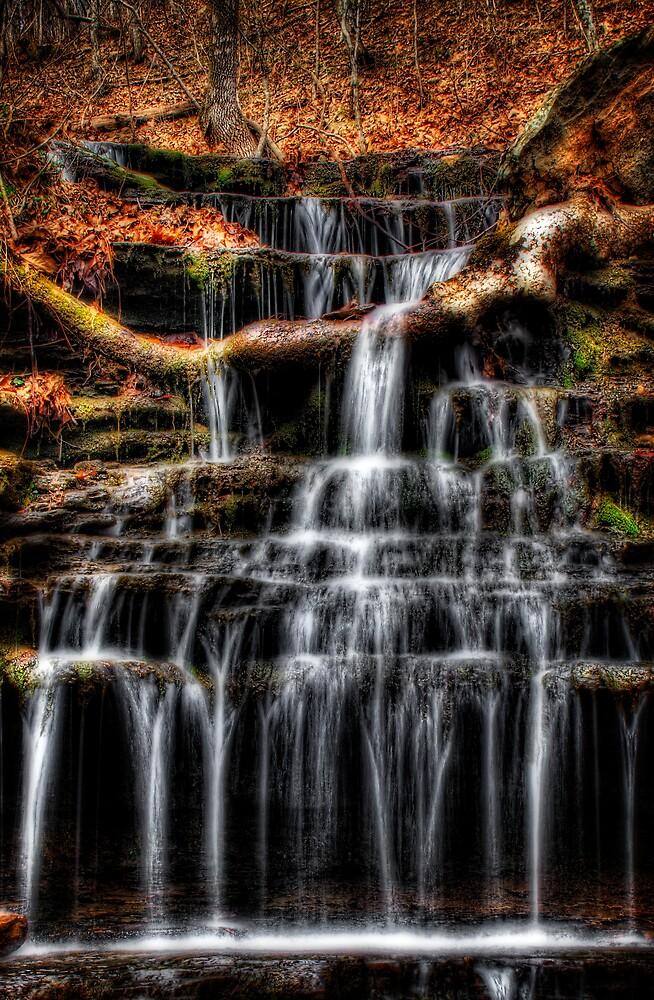 Log Falls by Scott Ward