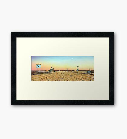 Birdsville Track Framed Print