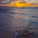 North Shore Sunset by Barbara  Brown