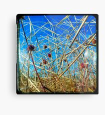 Red in the Blue Metal Print
