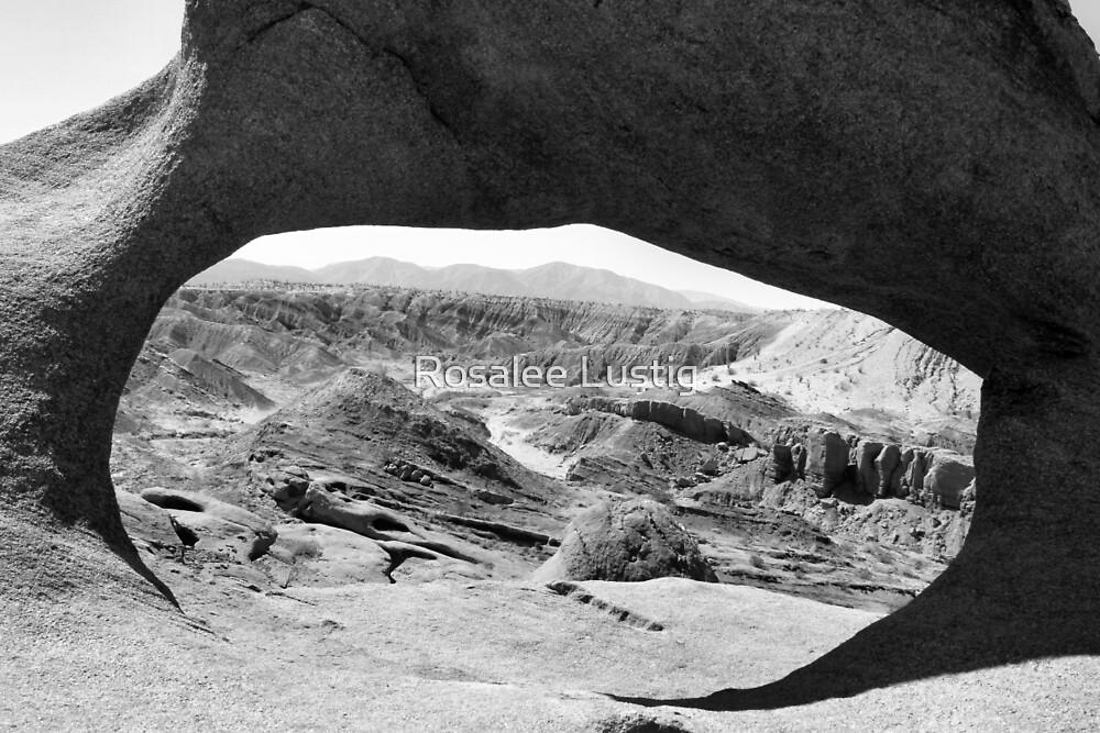 Eye of the Desert by Rosalee Lustig
