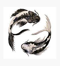 Yin Yang Koi Photographic Print