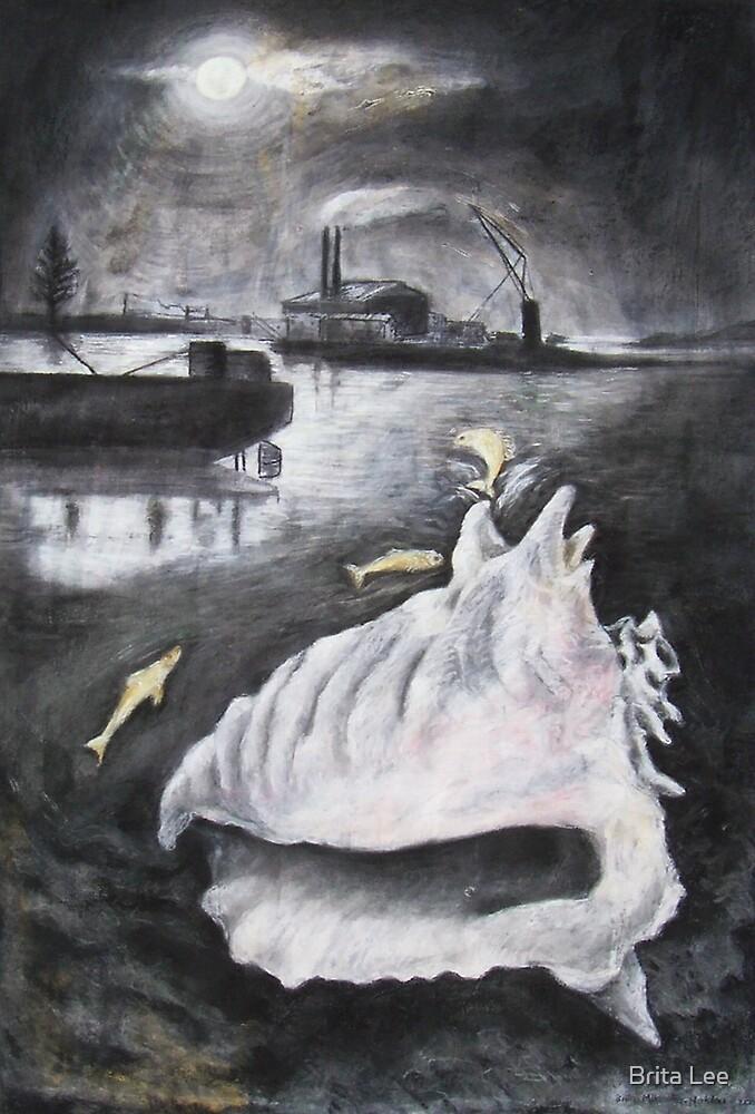Moonlight Shell by Brita Lee