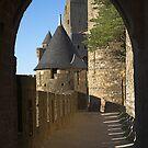 Carcassonne castle by Mikhail Lavrenov