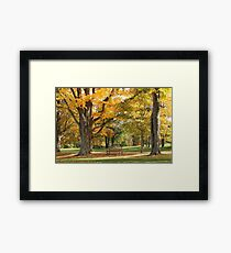 Stunning Autumn Forest - Gorgeous Fall Nature Print Framed Print