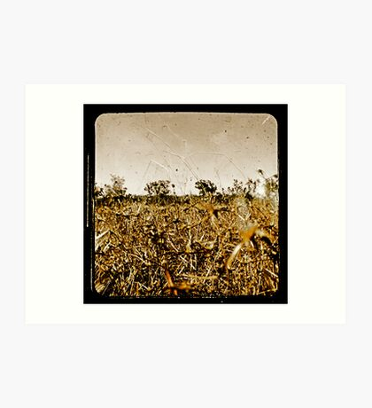 Wild Fields Art Print