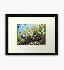 Tasting Beauty Framed Print