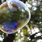 Beautiful Bubble by Laura Puglia