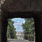 Tunnel Vision by John  Kapusta