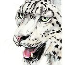 Snow Leopard by Meaghan Roberts