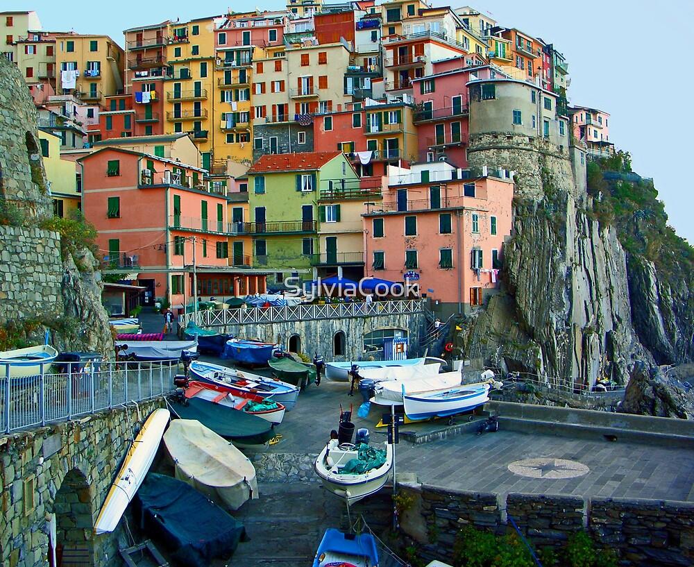 Manarola Italy by SylviaCook