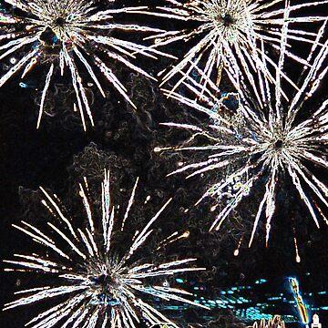fireworks by parkhopbears