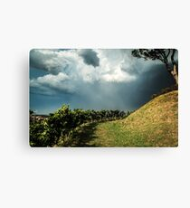 Storm over the vineyard Canvas Print