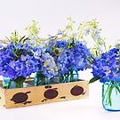 Blue Hydrangea In Vintage Planter And Mason Jar by daphsam