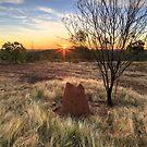 Sunset on Telecom Hill  by Frank Moroni