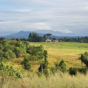 Campagna Farm - Far North Queensland by moronif