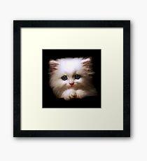 Cat Bed & Throw Pillows Framed Print