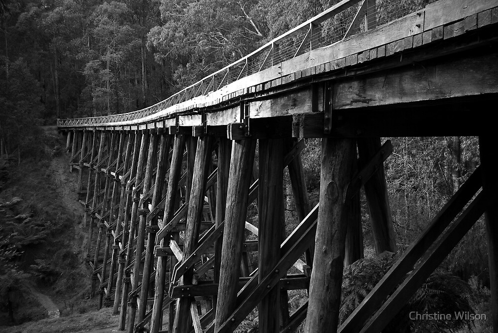 Noojee Trestel Bridge  by Christine Wilson