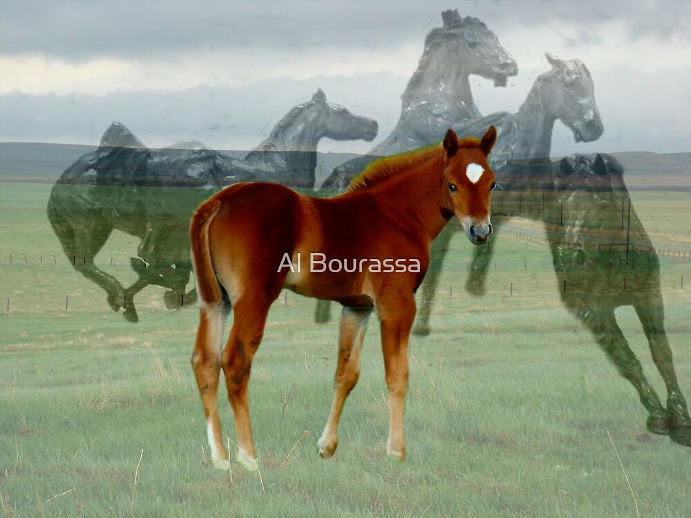 Future Derby Winner by Al Bourassa