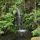 Waterfall by WeeZie