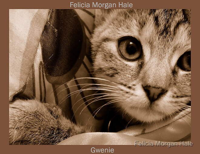 Gwenie by Felicia Morgan Hale