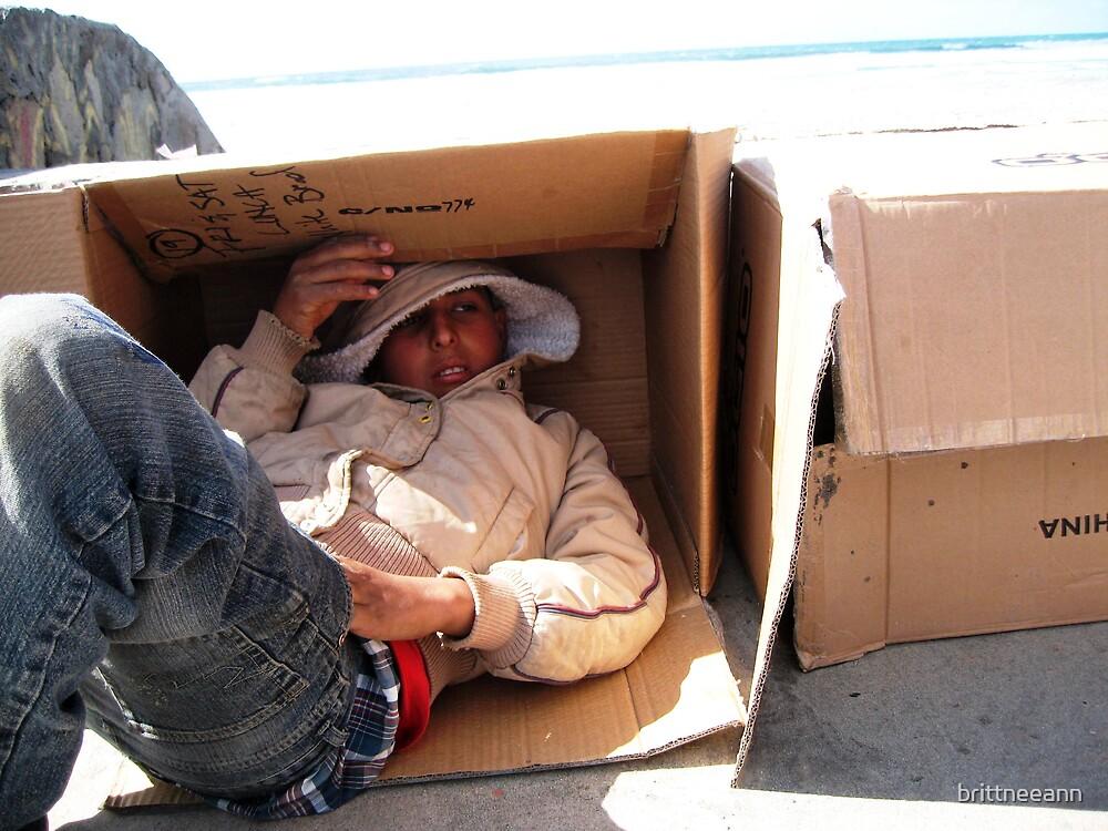 Siesta In A Box by brittneeann