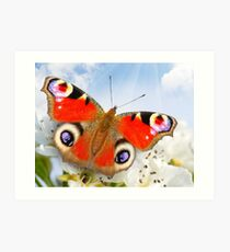 Butterfly! SALE! Art Print