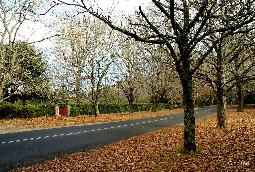 Autumn Road by Gino Iori