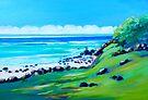 Burleigh Heads Headland  by Virginia McGowan