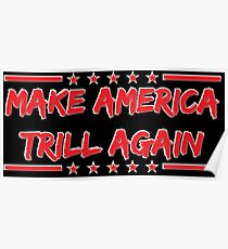 Make America Trill Again Poster