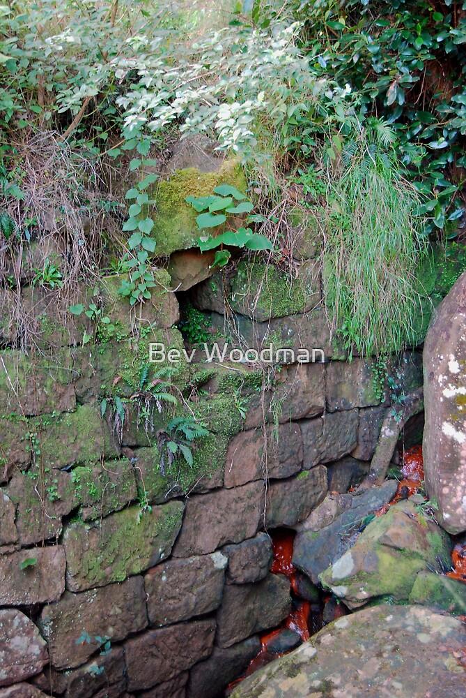 Rock Culvert of the Thomas James Bridge - Great North Road by Bev Woodman