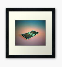 Firefly Currency Framed Print
