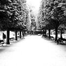 Paris by Phill Jenkins