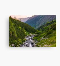 rapid stream in mountains at sunrise Canvas Print