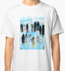 waterfalls Classic T-Shirt