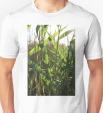 nature leaves Sunny day vivid green reeds T-Shirt