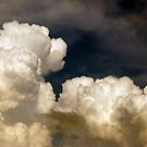 saturated storm clouds against the dark sky, dark blue tint by OlgaBerlet
