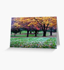 New England Colors Greeting Card