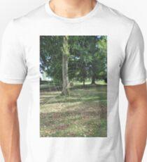 Toile d'araignée T-Shirt