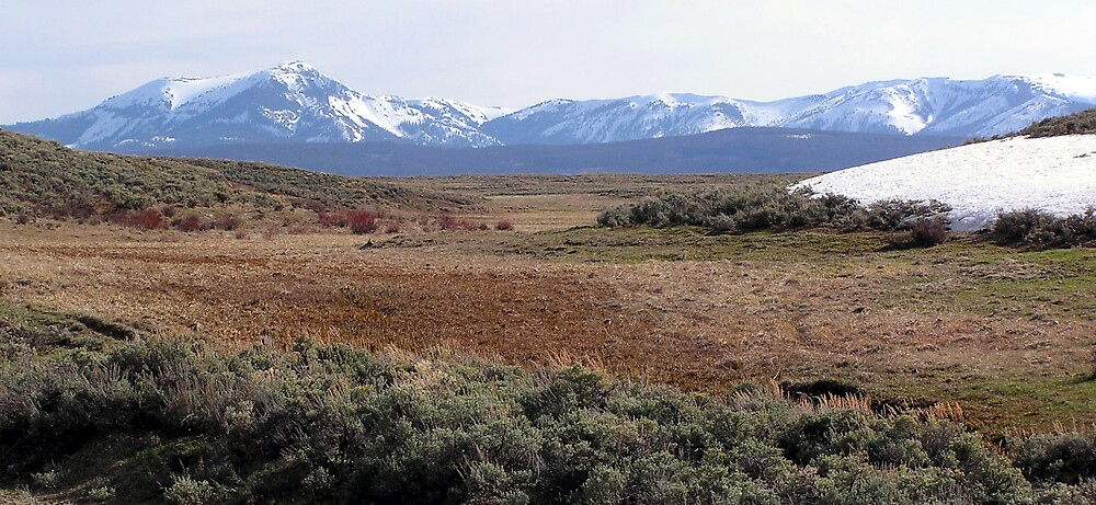 ~ Colorado ~ by Brion Marcum
