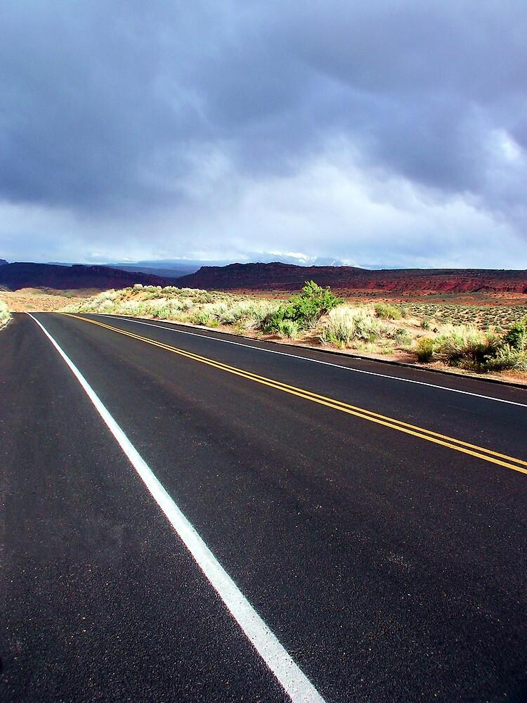~ Desert Road ~ by Brion Marcum