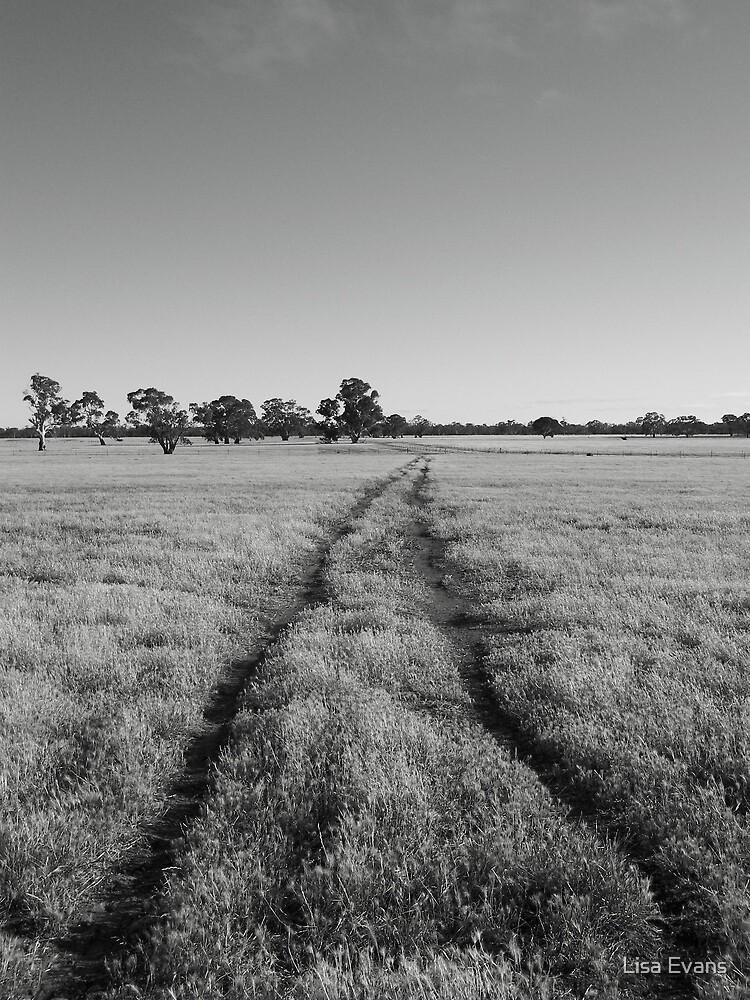 The Back Paddock, Western Victoria by Lisa Evans