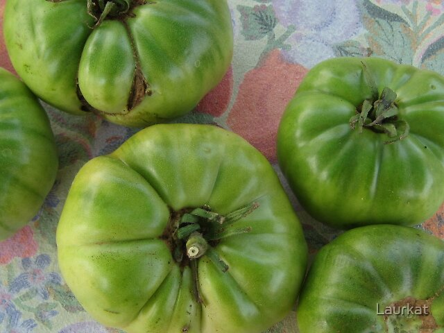 green tomatoes at the Jasper Farmers Market by Laurkat