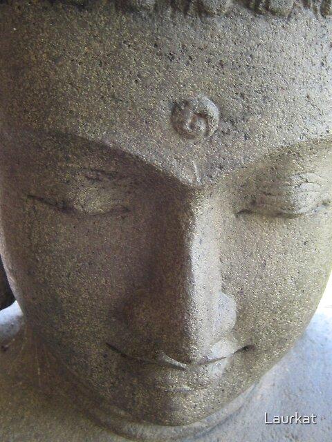Jasper Buddhaface in summer by Laurkat